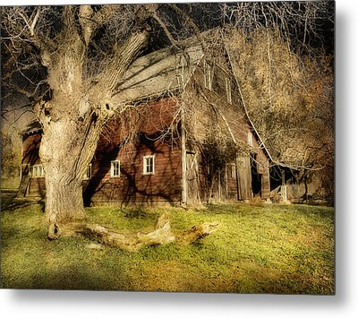 Country Afternoon Metal Print