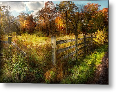 Country - Autumn Years  Metal Print by Mike Savad