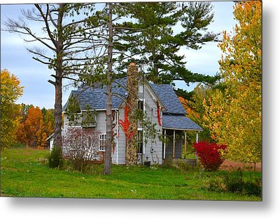 Country Cottage Metal Print by Julie Dant