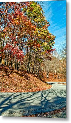 Country Curves And Vultures Metal Print by Steve Harrington