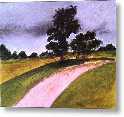 Country Driveway Metal Print by Andrea Friedell
