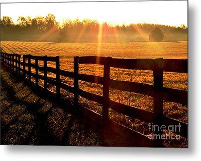 Country Fence Metal Print