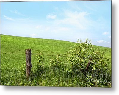 Country Fence With Flowers With Blue Sky Metal Print by Sandra Cunningham