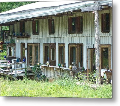 Country Gazing Metal Print