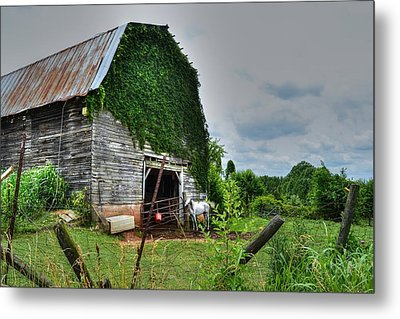Country Girls Dream Metal Print