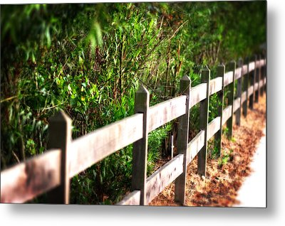 Country Green Metal Print