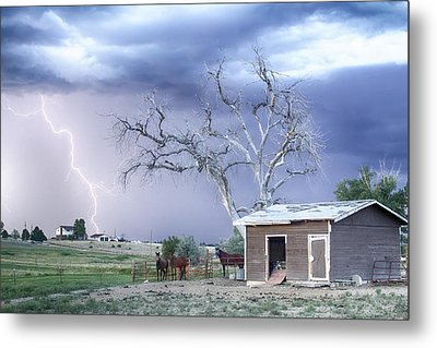 Country Horses Lightning Storm Co   Metal Print