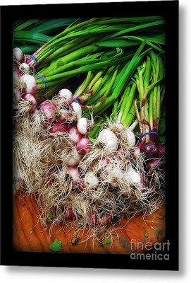 Country Kitchen - Onions Metal Print by Miriam Danar