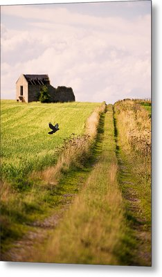 Country Lane Metal Print by Amanda Elwell