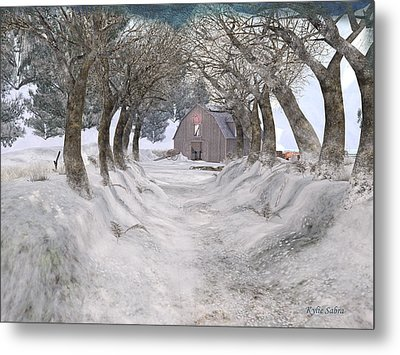 Country Lane In Winter Metal Print by Kylie Sabra