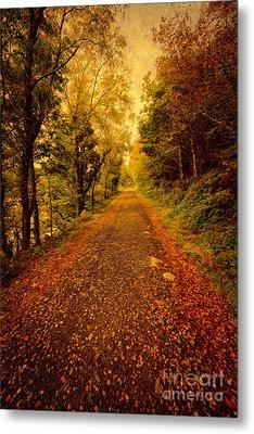 Country Lane V2 Metal Print by Adrian Evans