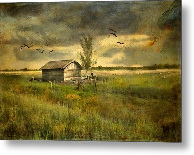 Country Life Metal Print by Annie Snel
