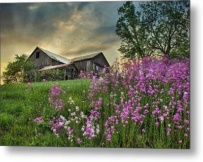 Country Living 3 Metal Print by Lori Deiter