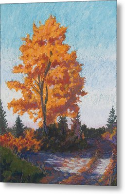 Country Road Cold Fall Morning Metal Print