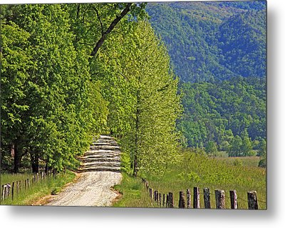 Metal Print featuring the photograph Country Road by Geraldine DeBoer