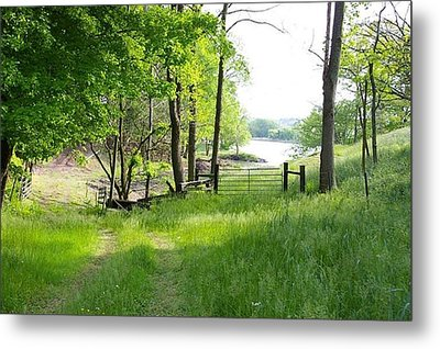 Country Road To Home Metal Print by Elizabeth King