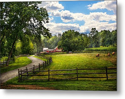 Country - The Pasture  Metal Print