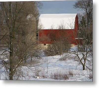 Country Winter Metal Print by Ann Horn