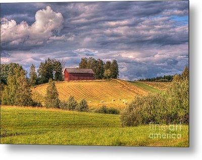 Countryside In Sweden Metal Print by Caroline Pirskanen