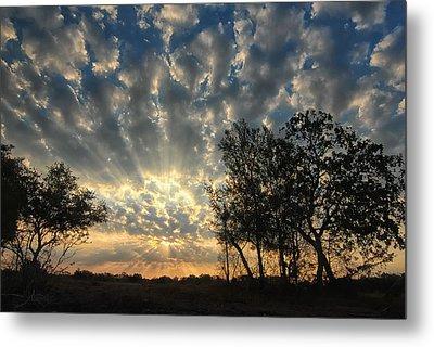 Countryside Sunrise Metal Print by Susan D Moody