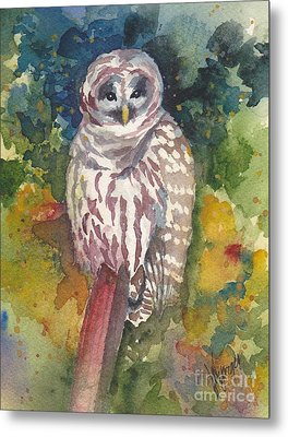 Coupeville Barred Owl Metal Print by Judi Nyerges