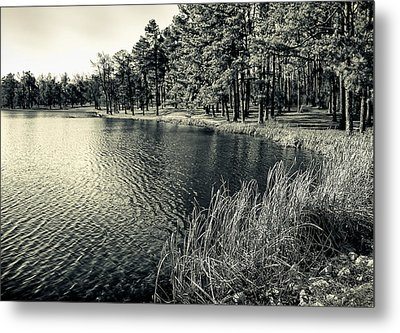 Metal Print featuring the photograph Cove by Greg Jackson