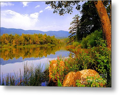 Cove Lake State Park  Metal Print by Frozen in Time Fine Art Photography