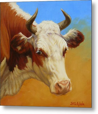 Cow Face Metal Print by Margaret Stockdale