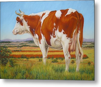 Cow On The Lookout Metal Print by Margaret Stockdale