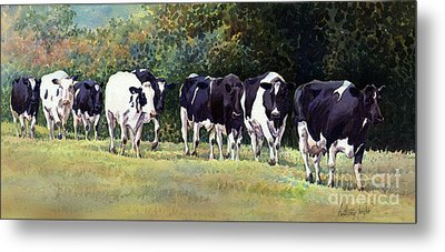 Cow Trail Metal Print by Anthony Forster