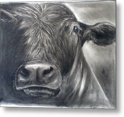 Metal Print featuring the drawing Cow View by J L Zarek