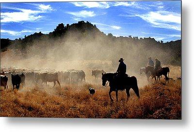 Cowboys Driving Cattle, Moab, Utah, Usa Metal Print