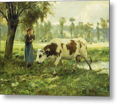 Cows At Pasture  Metal Print by Julien Dupre