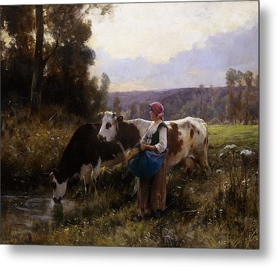 Cows At The Watering Hole Metal Print