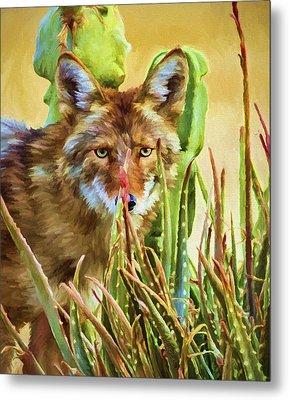 Coyote In The Aloe Metal Print