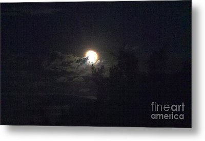 Coyote Moon Metal Print
