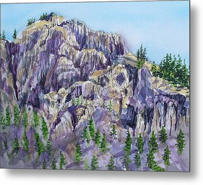 Coyote Mountain Metal Print by Lynne Haines