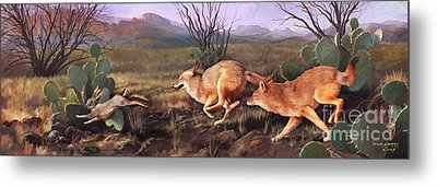 Metal Print featuring the painting Coyote Run by Rob Corsetti