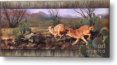 Metal Print featuring the painting Coyote Run With Boarder by Rob Corsetti