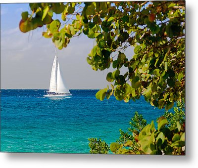 Metal Print featuring the photograph Cozumel Sailboat by Mitchell R Grosky