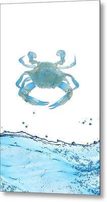 Crab Strolling Around Metal Print