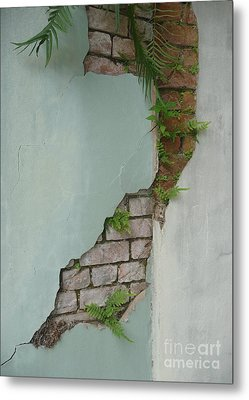 Metal Print featuring the photograph Cracked by Valerie Reeves