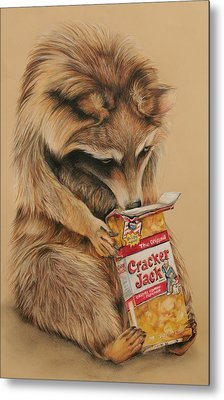 Cracker Jack Bandit Metal Print by Jean Cormier