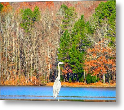 Crane And Color Metal Print