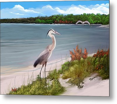 Crane By The Sea Shore Metal Print by Anthony Fishburne