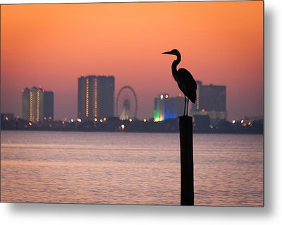 Metal Print featuring the photograph Crane On A Pier by Tim Stanley