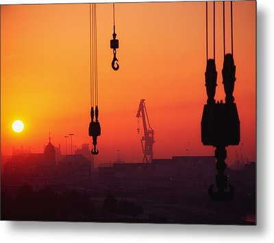 Cranes At Sunset Metal Print by The Irish Image Collection