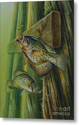 Crappie And Bridge Support Metal Print by Jon Q Wright