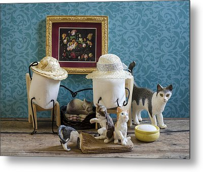 Crazy Cat Mallows Metal Print by Heather Applegate