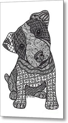 Crazy Jack - Jack Russell Terrier Metal Print